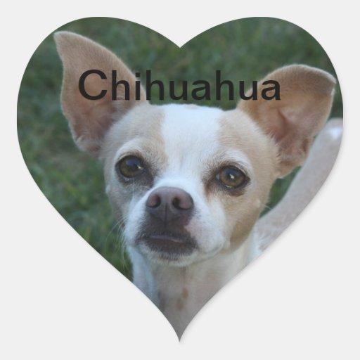 Chihuahua Heart Stickers
