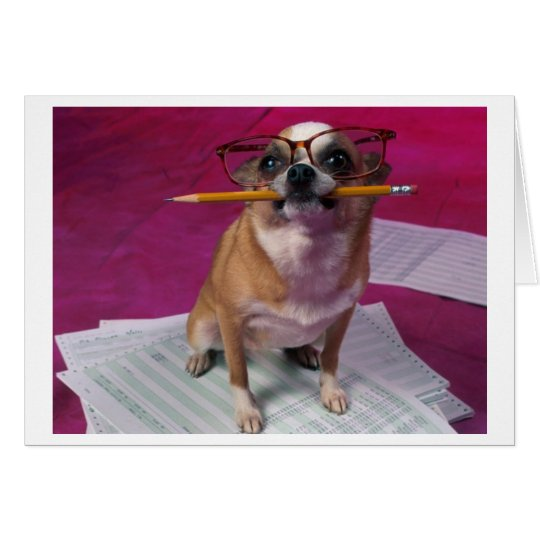 Chihuahua Thank You Card