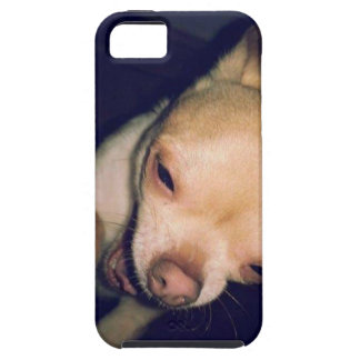 Chihuahua Tough iPhone 5 Case