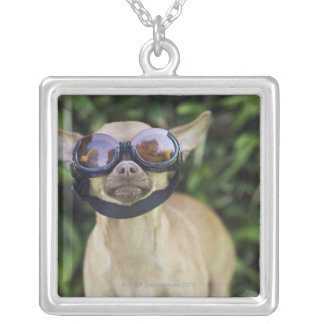 Chihuahua wearing goggles silver plated necklace
