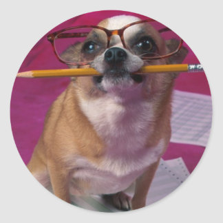 Chihuahua With Pencil Round Sticker