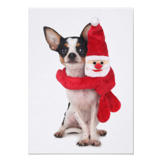 Chihuahua with Santa Claus doll Card