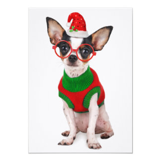 Chihuahua with Santa hat and glasses Card