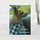 Chihuahua Yappy Birthday Card