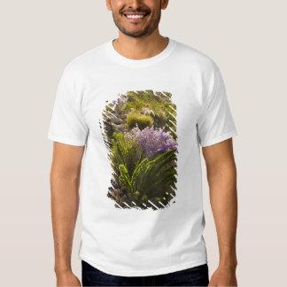 Chihuahuan desert plants in bloom shirt
