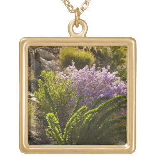 Chihuahuan desert plants in bloom square pendant necklace
