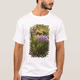 Chihuahuan desert plants in bloom T-Shirt