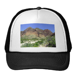Chihuahuan Desert scene 08 arroya Cap