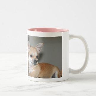 Chihuahuas Are The Best Two-Tone Coffee Mug