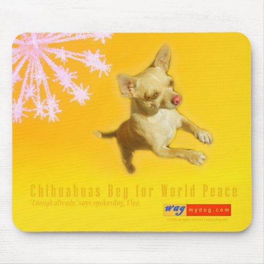 Chihuahuas Beg For World Peace Mousepad