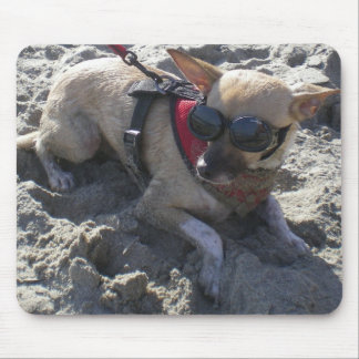 Chihuahua's Day at the Beach! Mouse Pad
