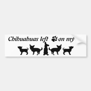 Chihuahuas left Paw Prints my Heart Fun Dog Quote Bumper Sticker