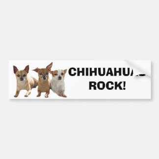 Chihuahuas Rock Bumper Sticker