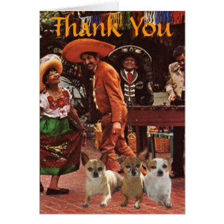 Chihuahuas Thank You Card