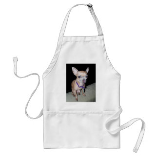 Chihuhahua Looking At You Standard Apron