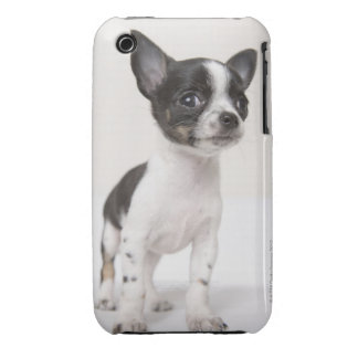 Chihuhua puppy standing on white fabric iPhone 3 case