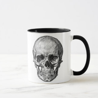 child skull and adult skull mug