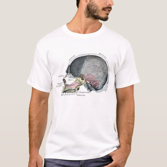 Child Skull with colour T-Shirt