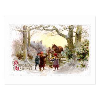 Children Feeding Horses Antique Christmas Postcard
