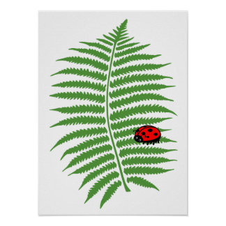 Childrens Colorful Ladybug Poster Print
