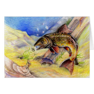 Children's Winning Artwork: brook trout Greeting Cards