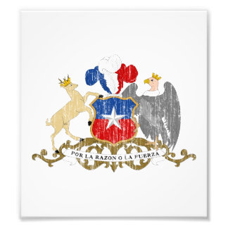 Chile Coat Of Arms Photo