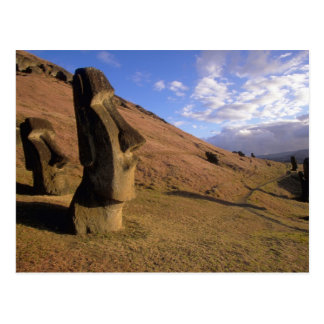 Chile, Easter Island. Hillside with Moai Postcard
