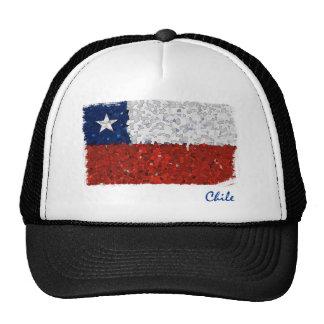 Chile Pintado Mesh Hats
