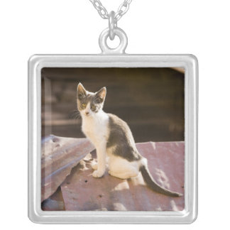 Chile, Valparaiso. Cat on a roof Silver Plated Necklace