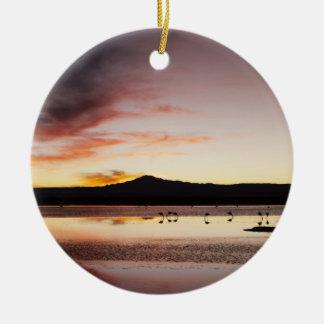 Chilean Flamingo Christmas Ornament