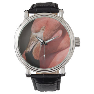 Chilean Flamingo, Phoenicopterus chilensis Wrist Watch