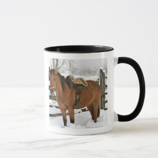 Chilean horse outfitted with traditional Chilean Mug