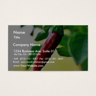 Chili Chillies Peppers Business Card
