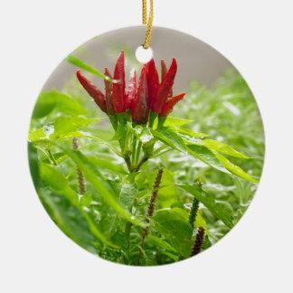 Chili flower round ceramic decoration