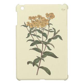 Chili Marigold Botanical Illustration iPad Mini Cover