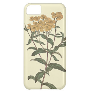 Chili Marigold Botanical Illustration iPhone 5C Case