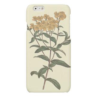 Chili Marigold Botanical Illustration iPhone 6 Plus Case