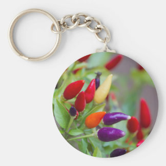 chili on plant key ring