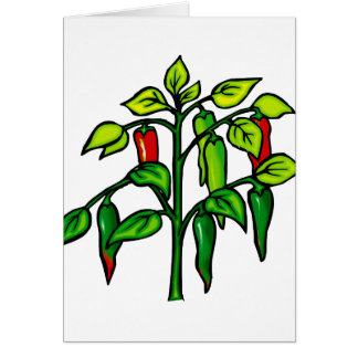 Chili Plant Many Peppers Graphic Greeting Card