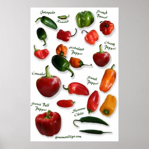 Chili Varieties Wall Art Print