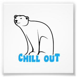 Chill Out Polar Bear Photo