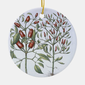 Chilli Pepper plants, from the 'Hortus Eystettensi Round Ceramic Decoration