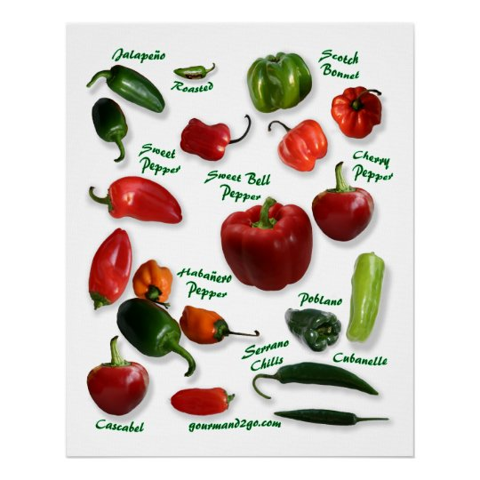 Chilli Pepper Varieties Poster