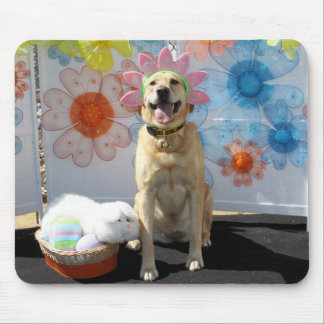 Chilli - Yellow Labrador -12 Mousepad