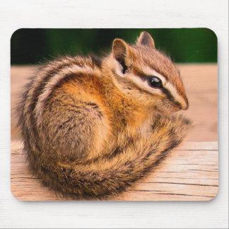 Chilly Chipmunk Mouse Pad