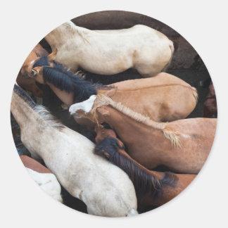 Chiloe Island ferry, horses Round Sticker