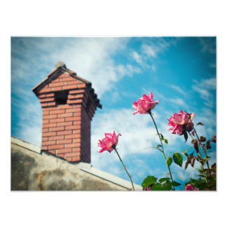 Chimney and wild roses photo