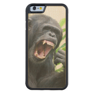 Chimp Baring Teeth Carved® Maple iPhone 6 Bumper Case