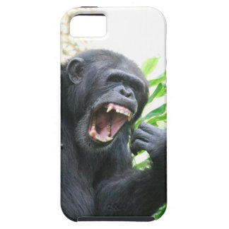 Chimp Baring Teeth iPhone 5 Cases