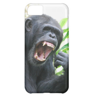 Chimp iPhone 5C Covers